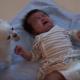 【動画】名コンビ!?泣く赤ちゃんにおやつをあげる犬