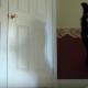 【わんこ動画】とにかくすごい!ボーダーコリーの連続スゴ技動画!