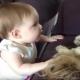 【わんこ動画】心が通じる?犬と赤ちゃんのコミュニケーション
